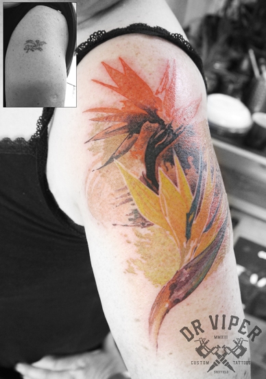 Dr Viper paradise flower tattoo cover up